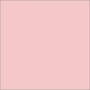 rosa-claro-2529